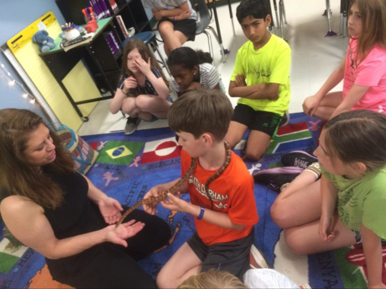 Fourth graders learn about animal adaptations